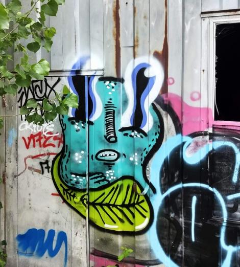 Waxhead on an abandoned shed