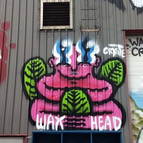 Waxhead in Hochelaga