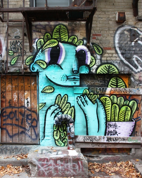 Waxhead in a Plateau alley