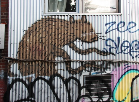 Cryote in alley between St-Laurent and Clark