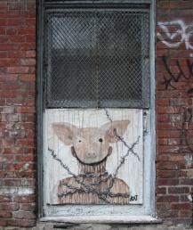 Kat poster in alley behind St-Laurent