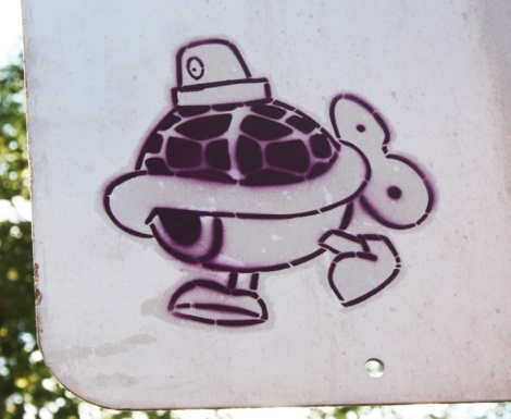 Turtle caps paste-up