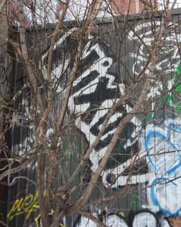 Nixon graffiti near train tracks circa St-Laurent