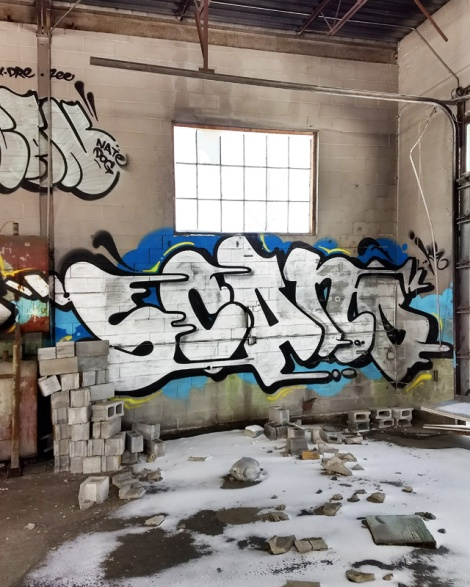Scaner in an abandoned building