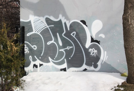 Scaner graffiti