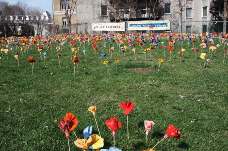 flower garden created at Parc Leo-Pariseau in protest for the government's austerity measures