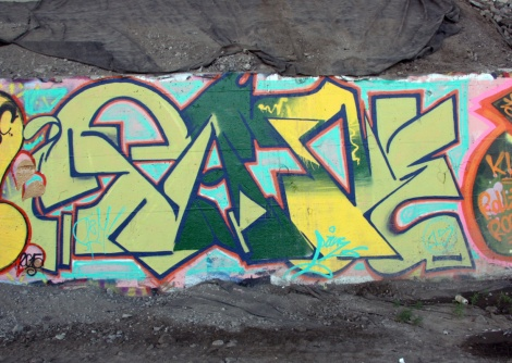 Pase(?) under expressway