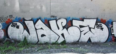 Jaker under expressway