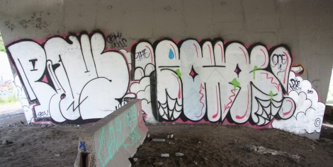 Pane and Rokos underneath Expressway