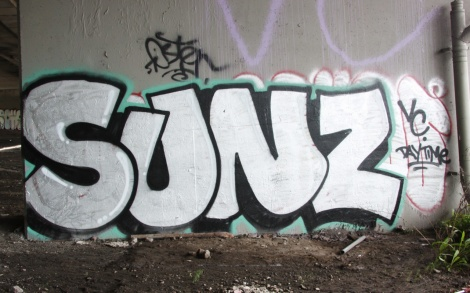 Sunz representing VC underneath expressway