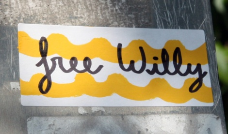 Free Willy sticker