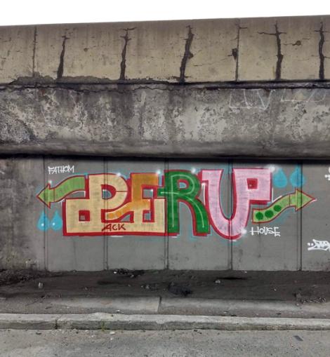 highwayside throw by Peru
