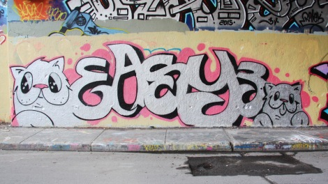 Mr Chose aka Easy3 at the Rouen legal graffiti tunnel