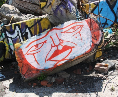 Mono Sourcil in abandoned lot in Hochelaga