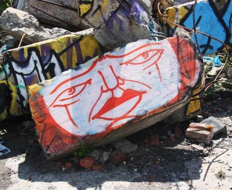 Mono Sourcil in abandoned lot in Hochelaga