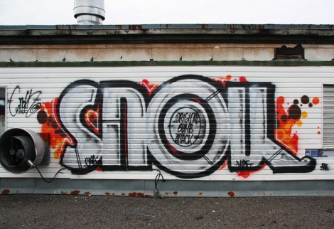 Snok found on roof of the abandoned Transco