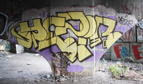 Yesir under Bercy overpass
