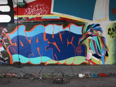 Daym (letters) and Karl Marks (bird) at the Rouen legal graffiti tunnel