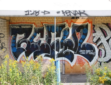 Lyfer on an abandoned warehouse in Hochelaga