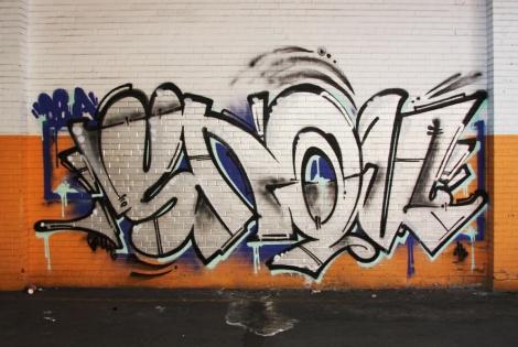 Snok in the abandoned Transco's orange room