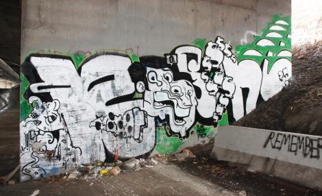 Bosny under expressway