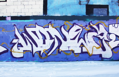 Wonez piece in Rosemont