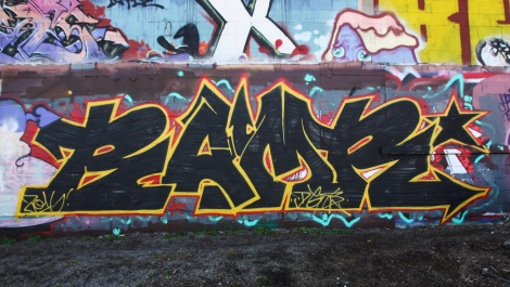 Bamr in Rosemont