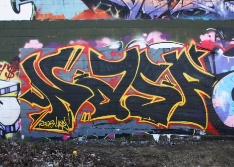 Nasp in Rosemont