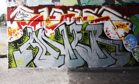 Aner found under a bridge