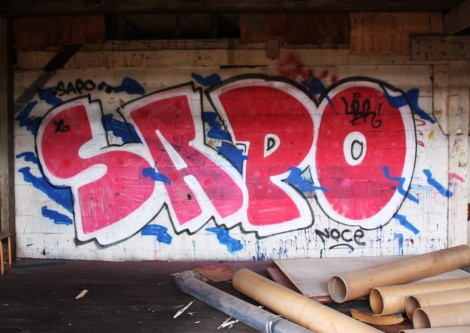 Sapo in the abandoned Transco