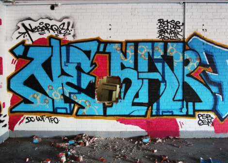 Nesar in the abandoned Transco