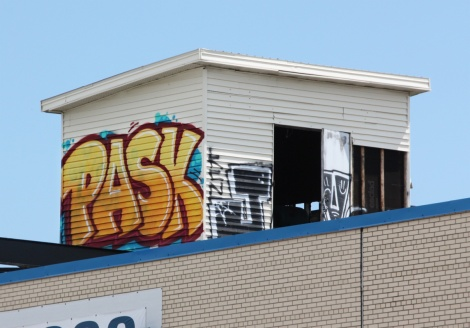 Pask on the roof of an abandoned warehouse