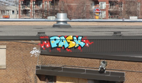 Pask on the roof of an abandoned Rosemont building