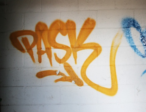tag by Pask