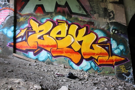 Zek underneath Rosemont bridge