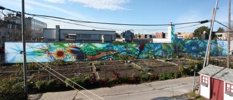long Zek wall in Hochelaga for A'Shop