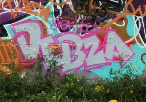 Debza quickie found on a Rosemont graf wall