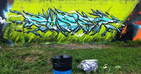 Fuser in Rosemont
