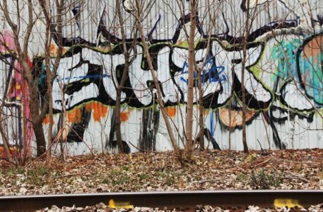 trackside throw by Ether