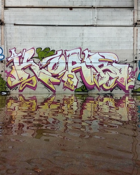 Korb in an abandoned building in the South West