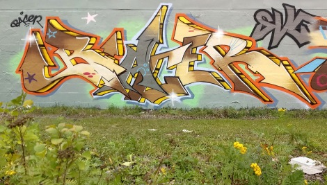 Bacer in Rosemont